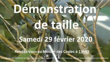 2020-03-affiche démo taille 29 février