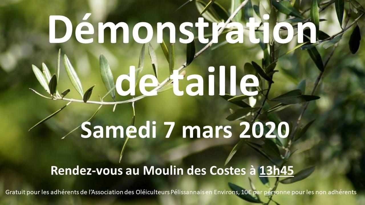 2020-03-affiche démo taille 7 mars
