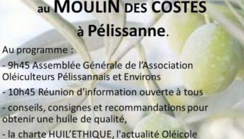 2020-10-affiche réunion olivades